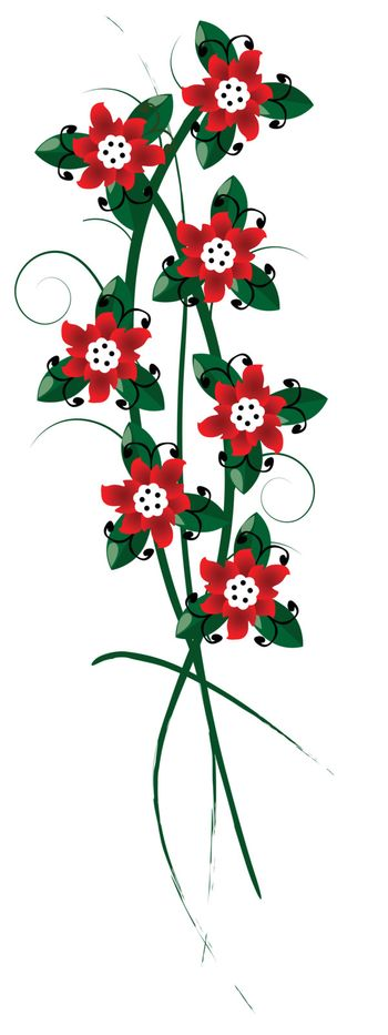 Floral arangement, red flowers bouquet over white background