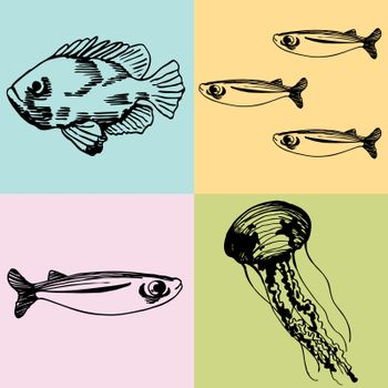 Set of 4 different drawings of sea creatures.