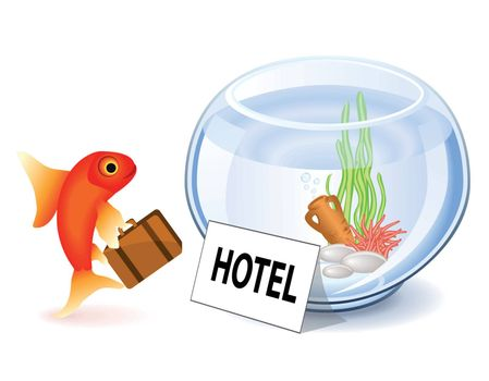 Goldfish arriving at the hotel