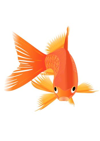 Icon of goldfish. Vector Icons. EPS10. Edited, grouped in layers.