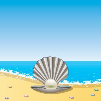vector opened sea shell with pearl on the sea shore