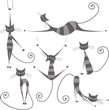 Graceful grey striped cats for your design