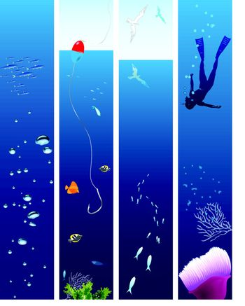 Collection of vector illustrations on the theme of marine life.