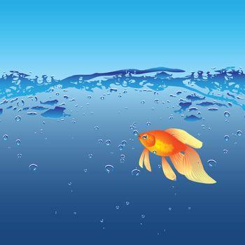Gold fish in their natural habitat. Vector illustration.