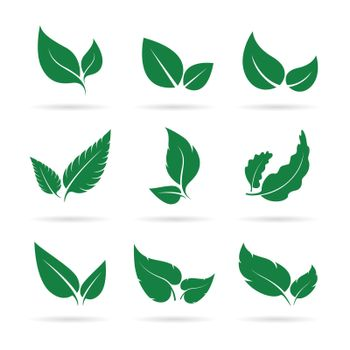 Vector of green leaves icon set design on white background. Easy editable layered vector illustration. Nature.