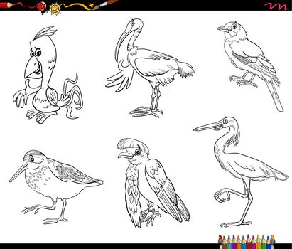 Black and white cartoon illustration of birds animals comic characters set coloring book page
