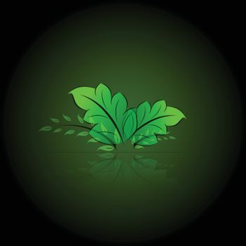 Transparent Green leaves with reflection for your design
