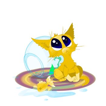 Kitten dropped aquarium with goldfish.