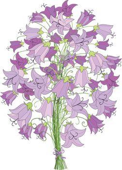 bellflower bouquet