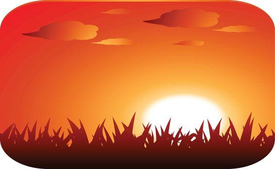 beautiful sunset illustration