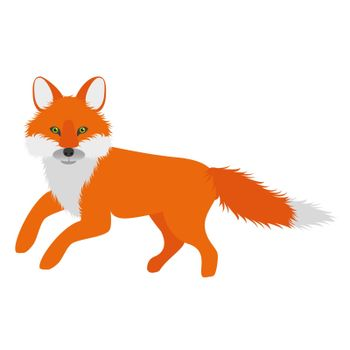 cartoon orange fox