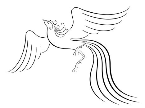 Black graceful Firebird contour isolated over white. Hand drawing vector illustration