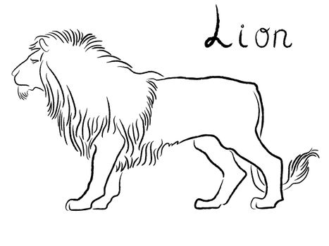 Black graceful Lion contour isolated over white. Hand drawing vector illustration