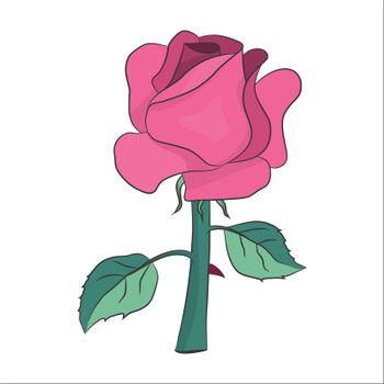 lovely pink rose with two leaves and thorn