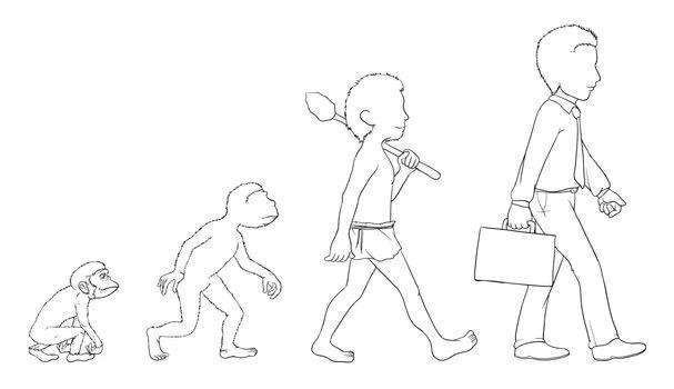 Illustration of evolution outline on white