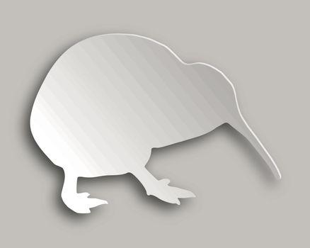 Kiwi on gray