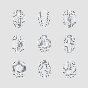 Abstract Types of Fingerprint Patterns Detailed for Identity Person Security ID on Gray Background