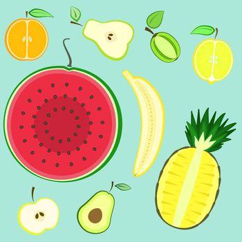 Colorful summer cut fresh fruits set, bright vector fruits split in a half