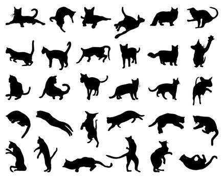 Black silhouette of cats on a white background