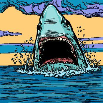 Dangerous aggressive shark in the ocean. Marine animal. Pop art retro vector illustration drawing