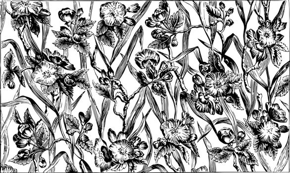 Chintz Fabric is a cotton fabric imprinted, its a colorful floral pattern, vintage line drawing or engraving illustration.