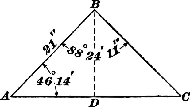 """The image shows the oblique triangle. It has alternating angles, interior, exterior and corresponding together with its measurements Side 21 'and Angles 88  24' 11 """"and 46  14, vintage line drawing or engraving illustration."""