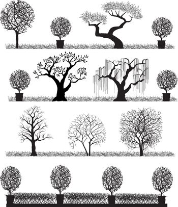 Silhouette of trees on a white background