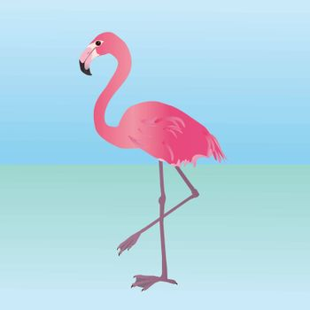 An illustration of a pink flamingo. He is holding one leg up.
