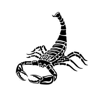 Aggressive black and white Scorpion for tattoos, zodiac sign. Vector illustration