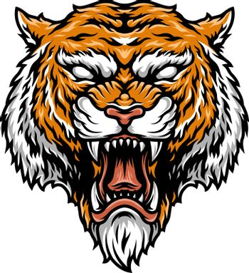 Colorful aggressive strong tiger head in vintage style isolated vector illustration