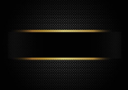 Carbon fiber background and texture and lighting with black label and gold line. Luxury style. Material wallpaper for car tuning or service. Vector illustration