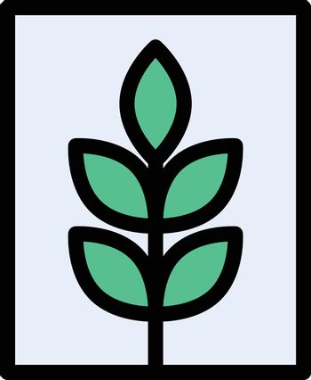 picture crop vector line colour icon