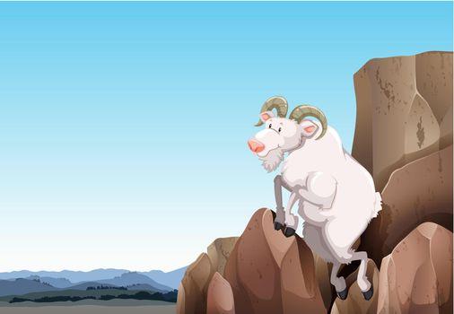 White goat climbing on a mountain