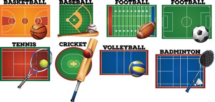 Sport courts and equipment illustration