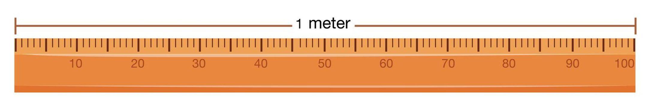 Wooden ruler with measurement in meter illustration