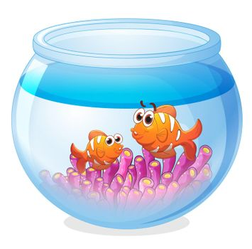 illustration of a water bowl and a fish on a white background