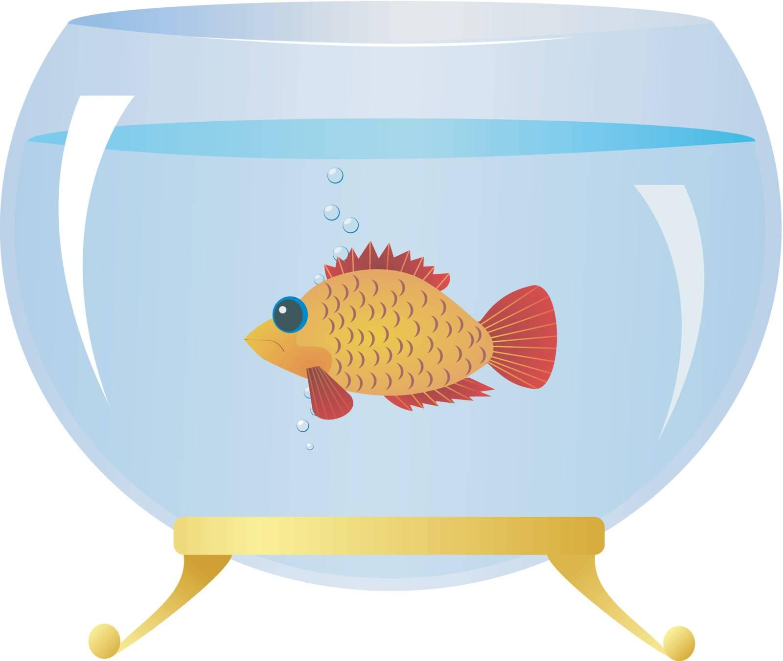 Decorative fish in an aquarium
