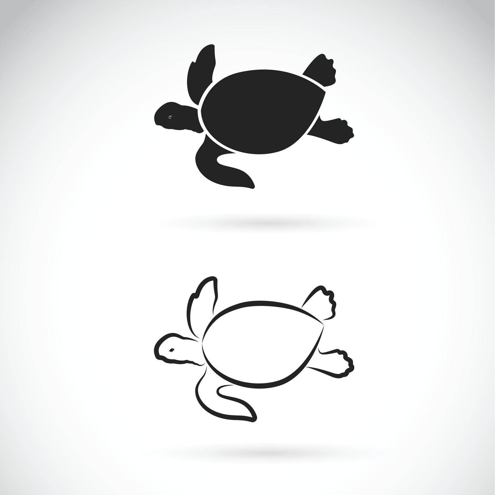 Vector of two turtle design on white background. Easy editable layered vector illustration. Wild Animals. Reptiles. Amphibians.