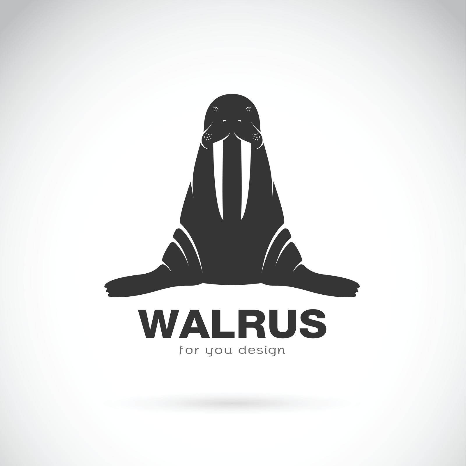 Vector of walrus design on white background. Easy editable layered vector illustration. Wild Animals.