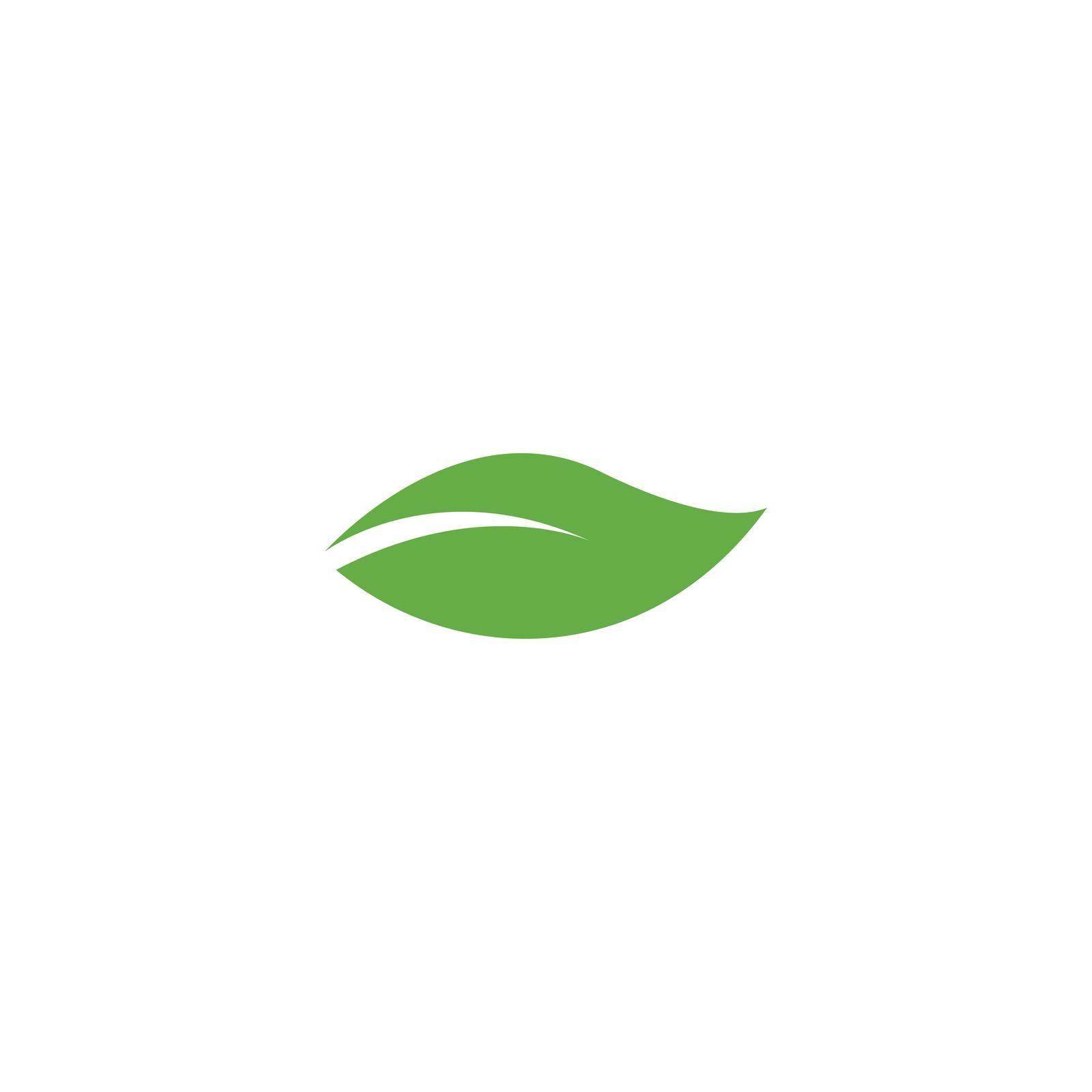 Green leaf illustration nature logo design