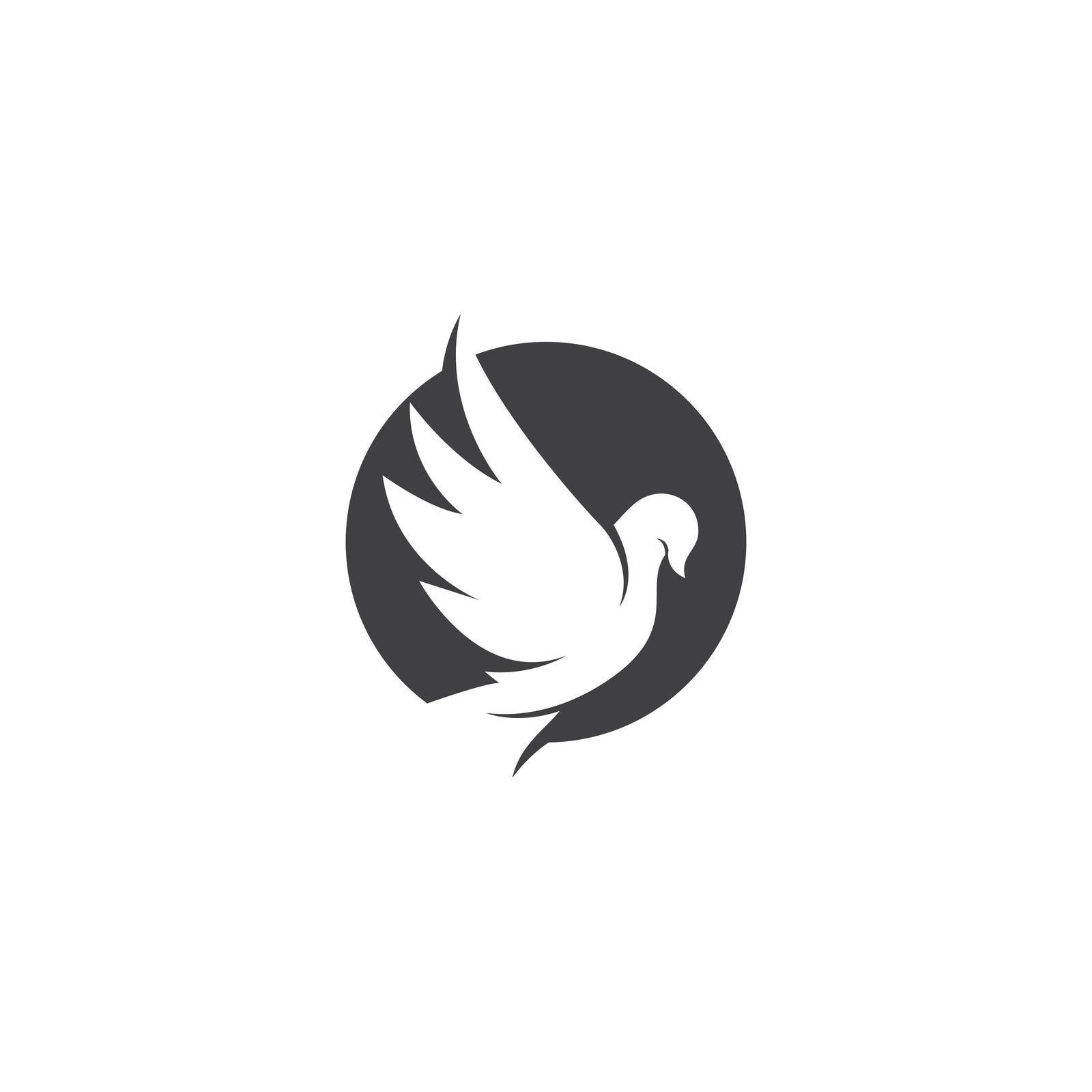 Dove bird logo vector design