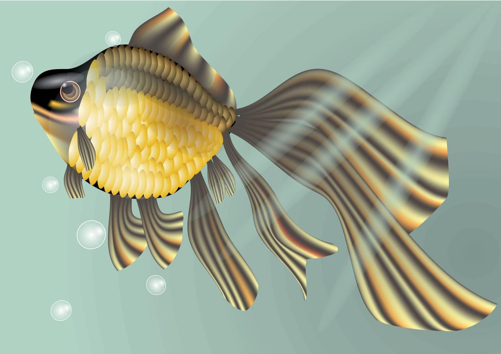 goldfish by arkela