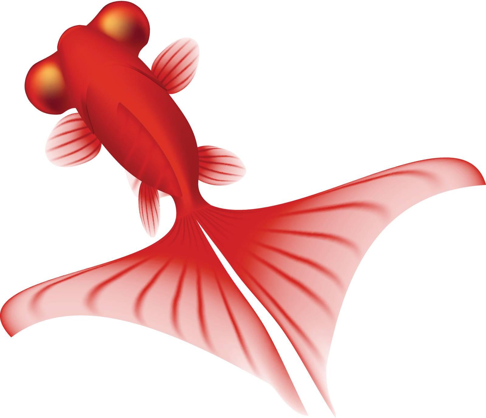 Layered vector illustration of Gold Fish.