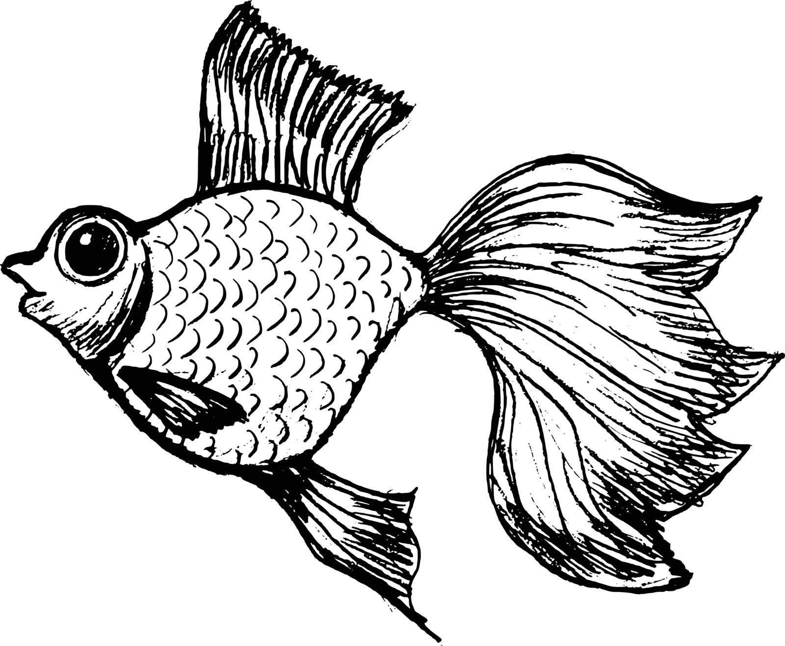 hand drawn, vector, sketch illustration of goldfish