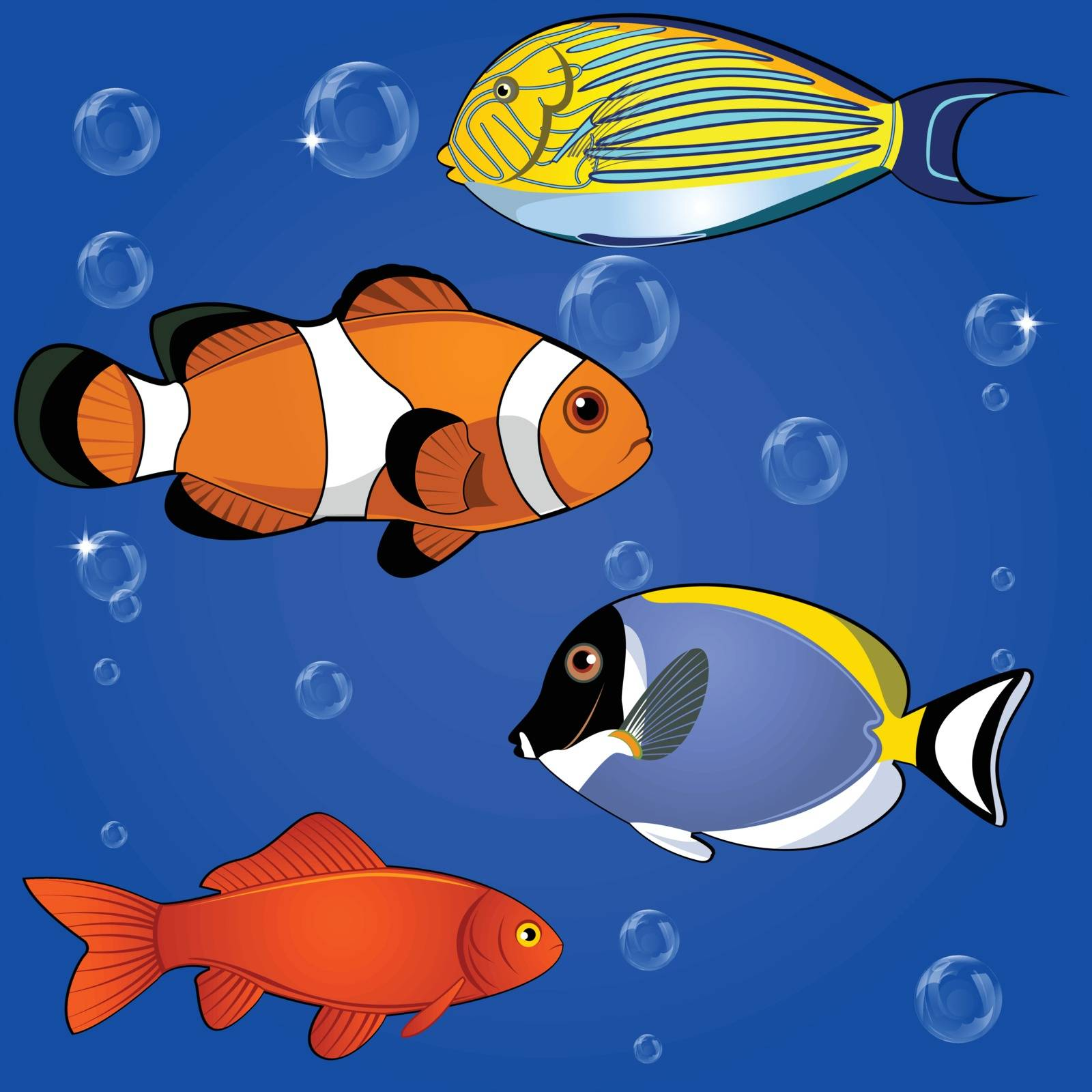 Vector of tropical fish set on white background