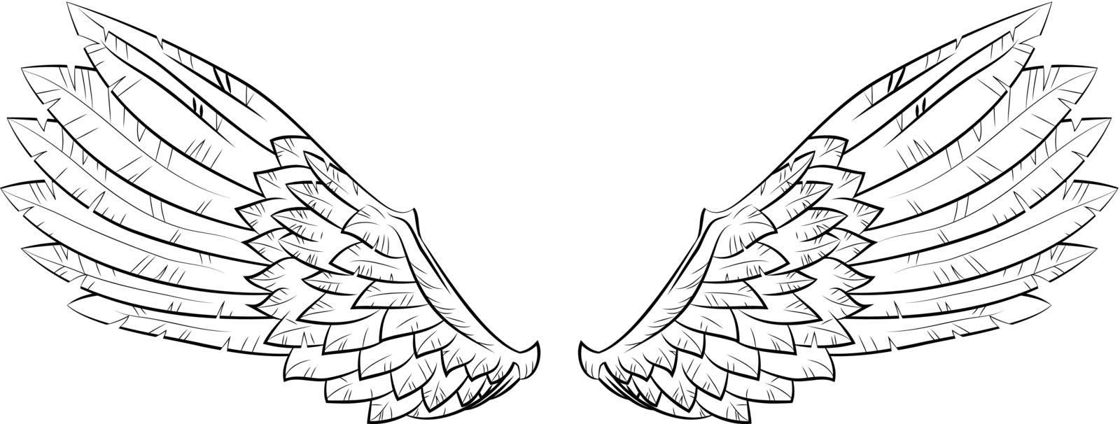 Vector illustration wings, EPS 10