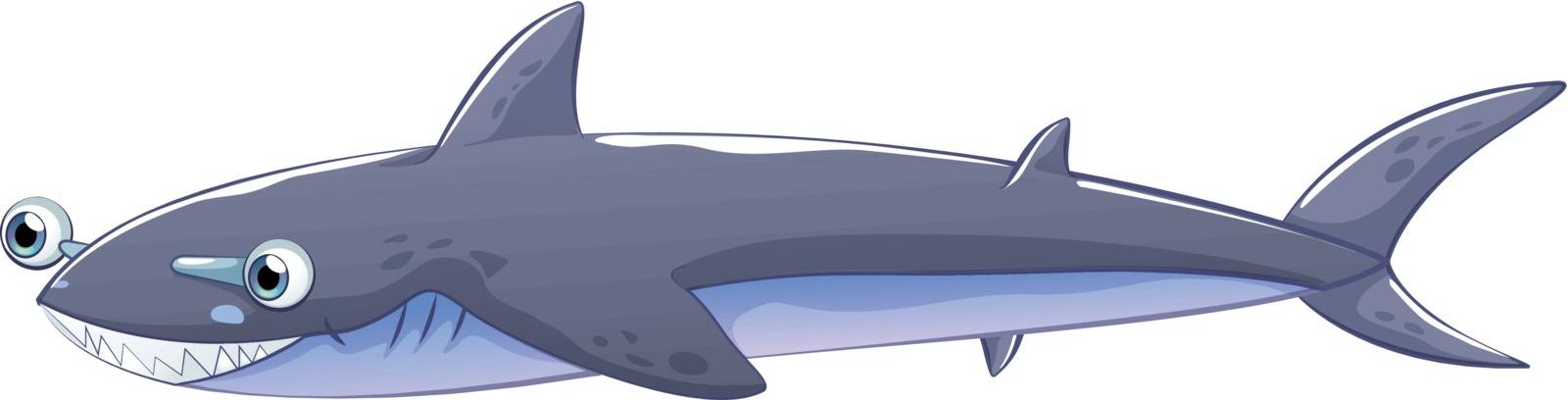 Illustration of a gray shark on a white background