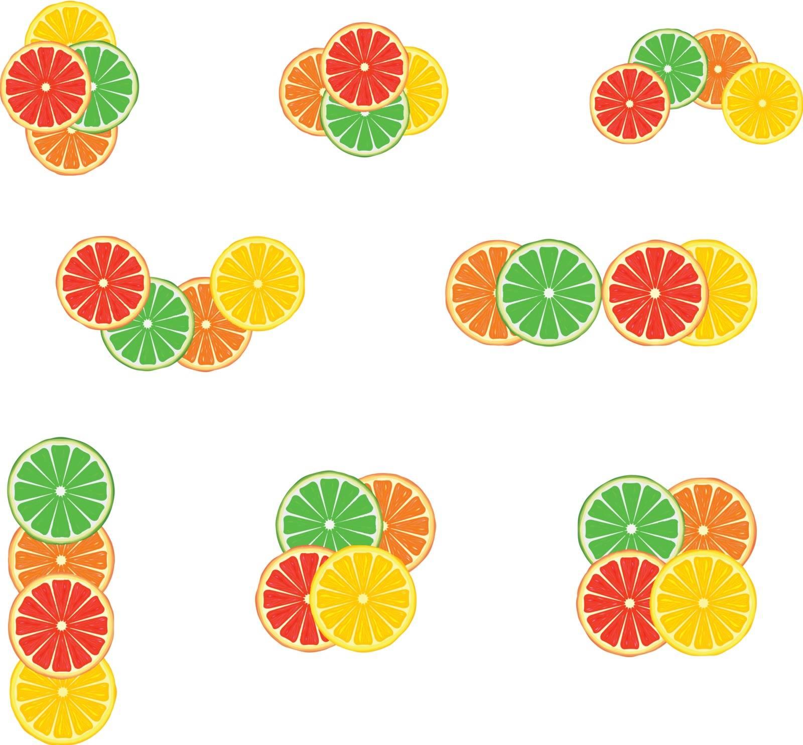 Set of citrus emblem variants on white background