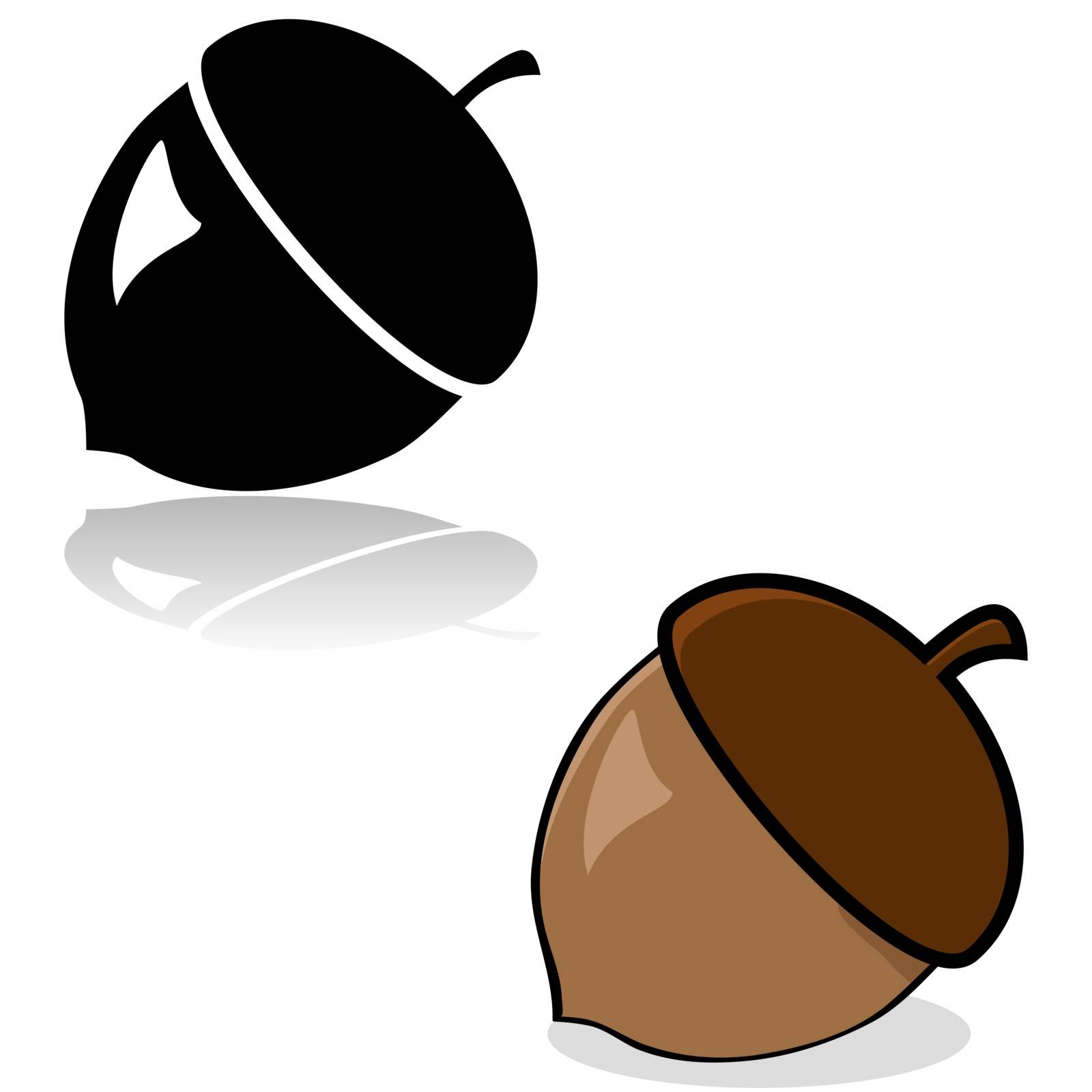 Drawing of an acorn in color and black and white