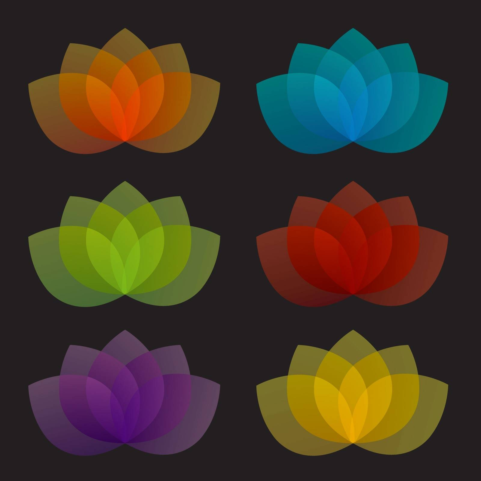 Graceful lotus with 5 petals